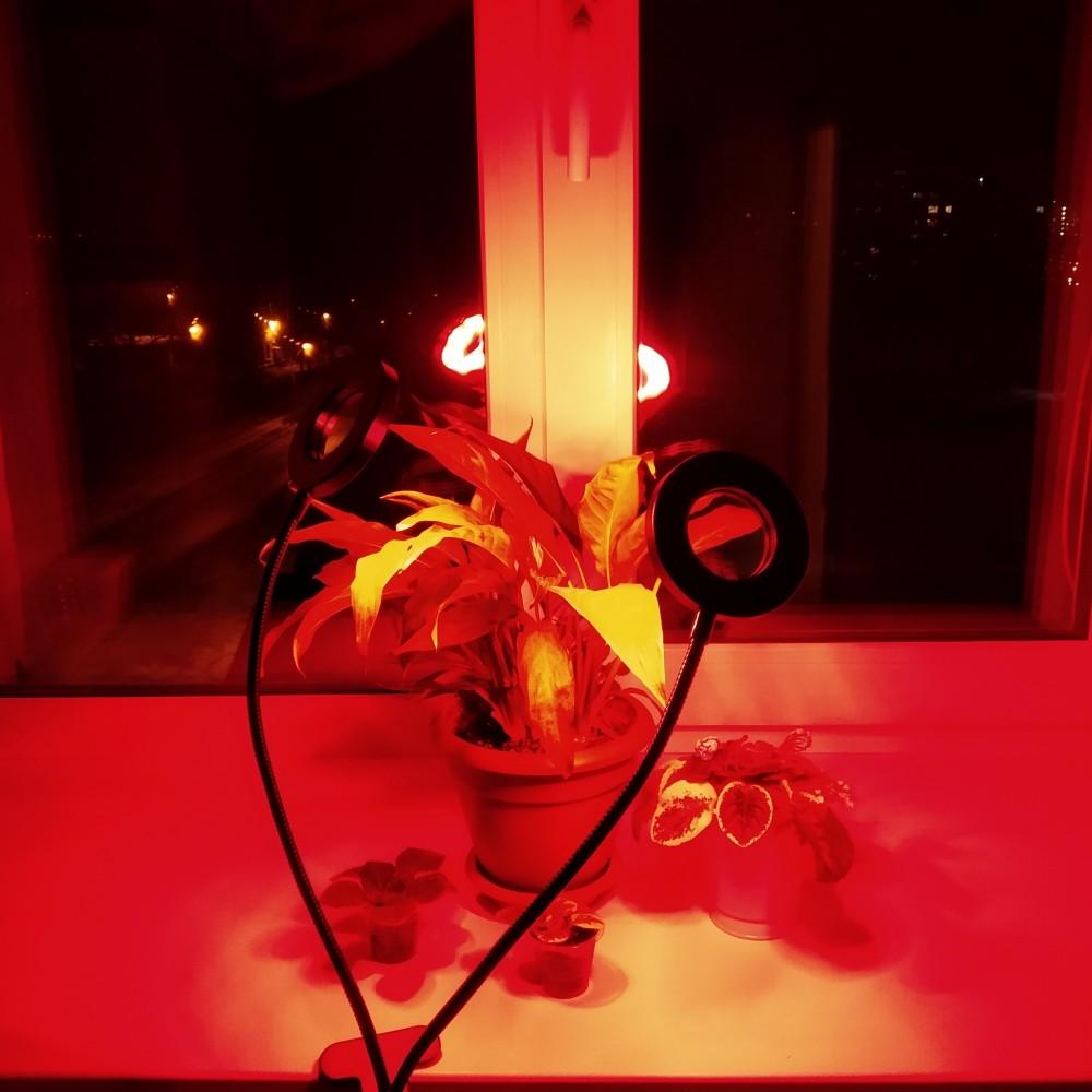 Кольцевой светодиодный фитосветильник с таймером