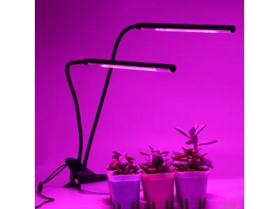 Как выбрать светильник для растений?