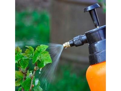 Почему растения получающие жидкое удобрение, растут лучше всего?