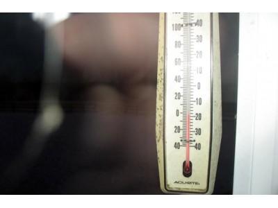 Влияние температуры на растения