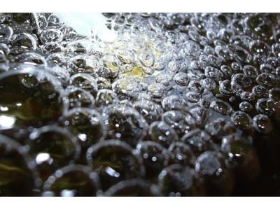 Вода для растений: типы и качества, методы обработки воды
